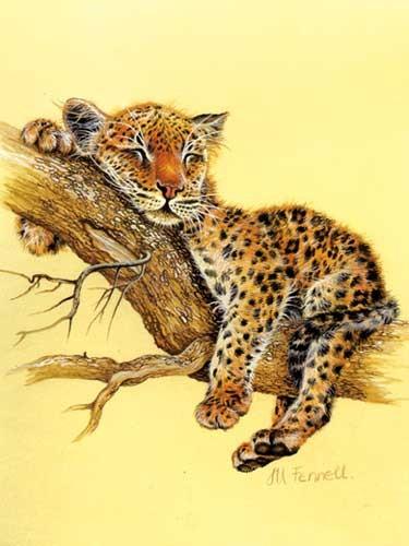 Kleiner Leopard, Fennel - Alu Druck