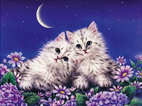 Moonlight Rendezvous by Kayomi Harai