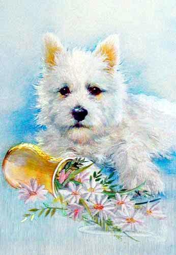 Westie mit Blumenvase- Postkarte