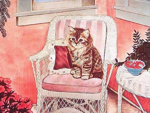 Kleine Katze im Sessel