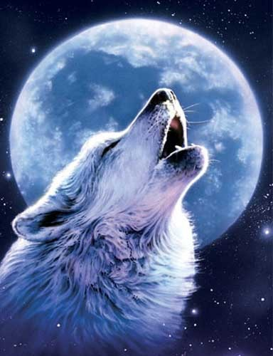 Howling Wolf *