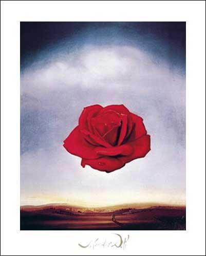 Kunstdruck 40x50 cm: Meditative Rose, Dali Salvador