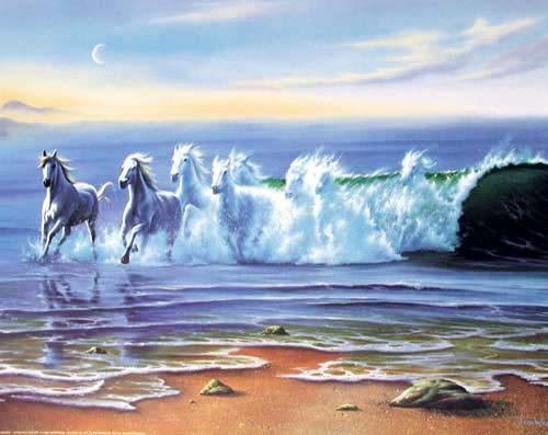 Wild Waters by Jim Warren *