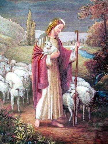 The Good Shepherd by Han Jin