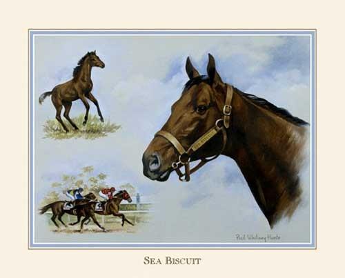 Pferd, Sea Biscuit
