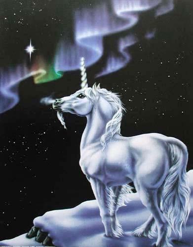 Einhorn und Nordlicht Poster