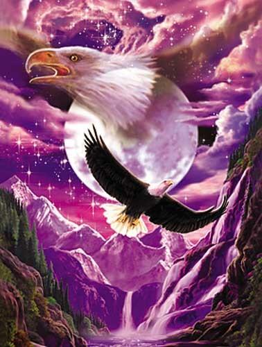 Weißkopfseeadler, Fantasie Bild