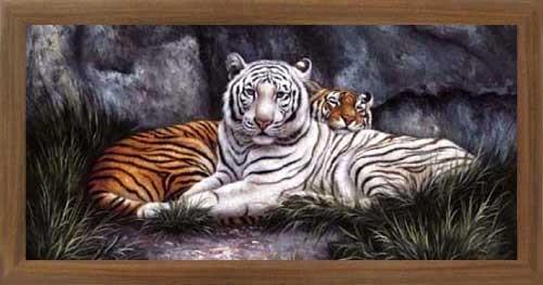 Weißer und Gelber Tiger