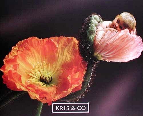 Baby und Mohnblumen Poster