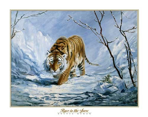 Tiger in the Snow by Don Balke