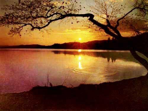 Sonnenuntergang am See Alu Bild