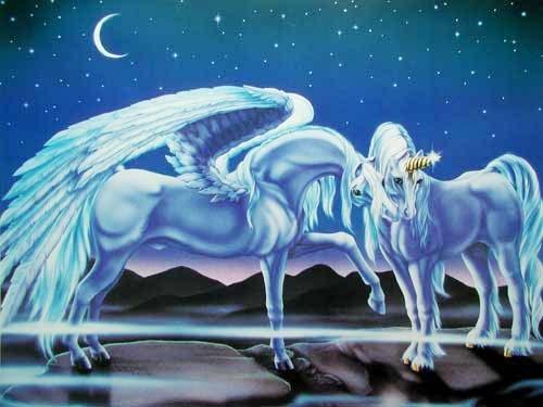 Einhorn und Pegasus Poster