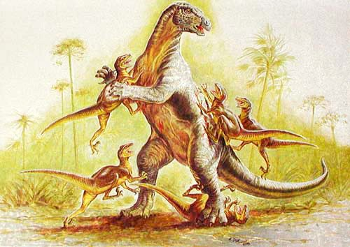Deinonychus gegen Iguanodon Postkarte