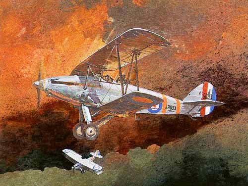 Hawkerhart by Juan Dorado