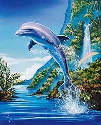 Springender Delphin und Regenbogen, Poster