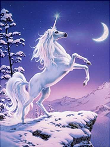 Mondschein Einhorn Alu-Folien Bild