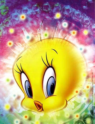 Tweety Magic Poster 18x24 cm