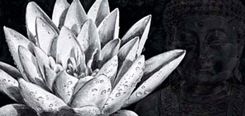 Wasserlilie und Budha