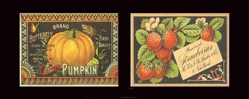 Berry Pumpkin Duet