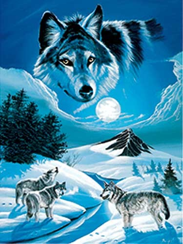 Wölfe im Schnee by Gary Ampel